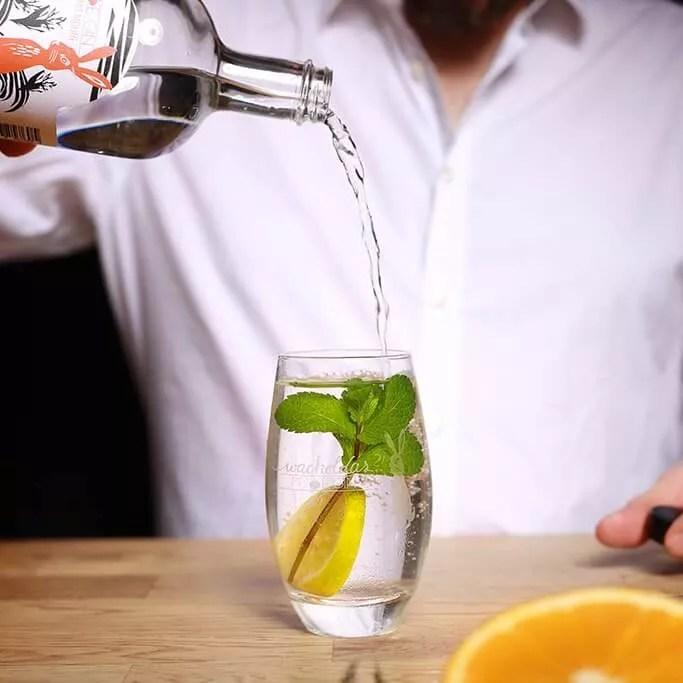 Gin aus der Region Köln - Bonn 3
