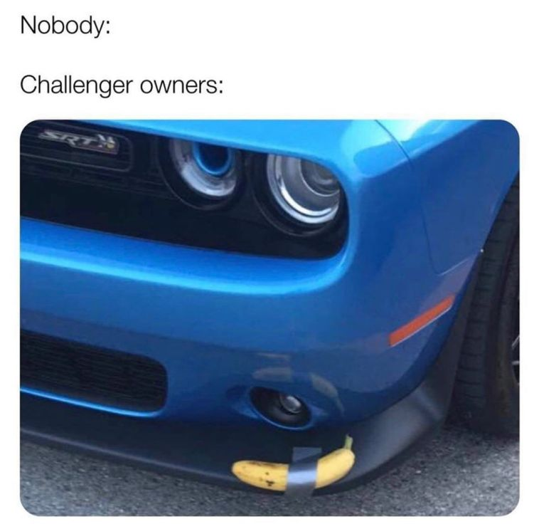Dodge Splitter Guard Meme
