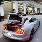 Cannonball Run Ford Mustang GT