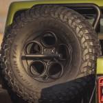 AEV Vertical Tire Mount