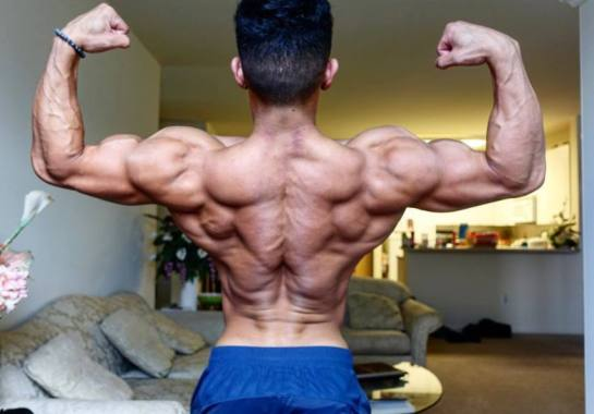 Shredded Muscle
