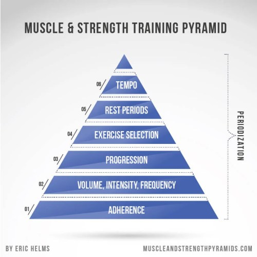 muscle and strength pyramid