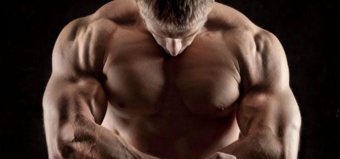 strength training lyle mcdonald bulking