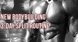 T.H.T. 3 Day Split Workout