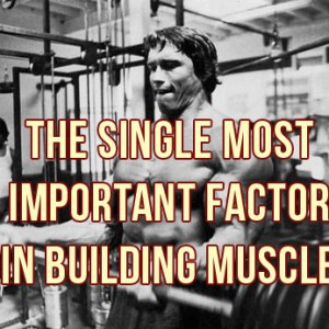 The Most Important Factor For Building Muscle