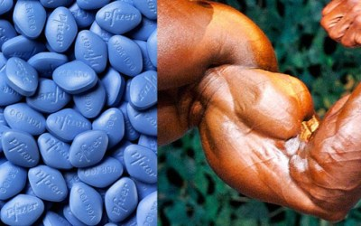 Does Viagra Double Muscle Gains?