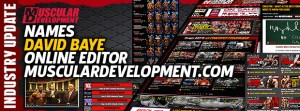 15davidbaye-editor