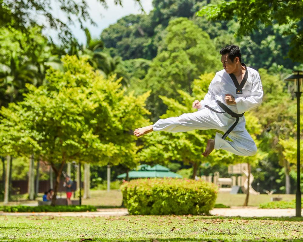 pesas para artes marciales