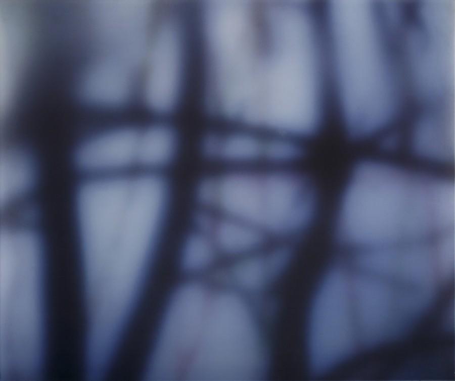 Carole Benzaken, Strange fruit 3, 2010-2011