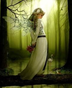 photo from:  http://treesandfaery.ning.com/