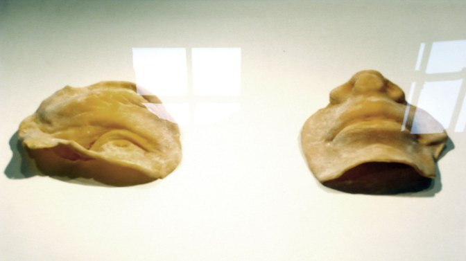 Lucia Baldini – Selvatico – E Bianca – Una parola diversa per dire latte – Cotignola – Museo Civico Luigi Varoli e Casa Magnani – Archeologie. Ossa e conchiglie, fossili e impronte