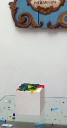 Silvia Chiarini – Selvatico – E Bianca – Una parola diversa per dire latte – Fusignano – Museo Civico San Rocco e Chiesa del Pio Suffragio – Geometrie e altre microscopiche meraviglie della natura e crescita
