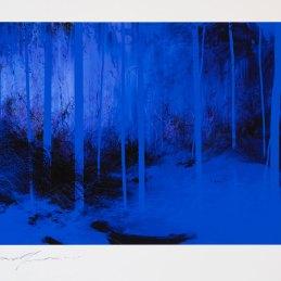 n.33 Enrico Minguzzi, Diciannove alberi blu, 2020, dipinto digitale, stampa Ink Jet su carta Fine Art Canson Infinity - Dimensioni foglio 33 x 42 cm, dimensioni stampa 18 x 30 cm - Riprodotta in 90 copie firmate e numerate