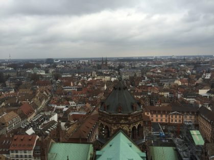Aerial View from Cathedral de Notre Dame