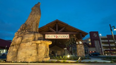 Photo of New Summer Enhancements Arrived at The Great Wolf Lodge
