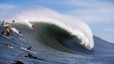Mavericks Big Wave