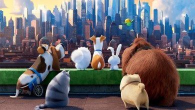Photo of The Secret Life of Pets: Off the Leash! Is Coming to Universal Studios Hollywood in 2020