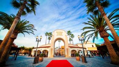 Photo of Universal Studios Hollywood Offering More For Annual Passholders