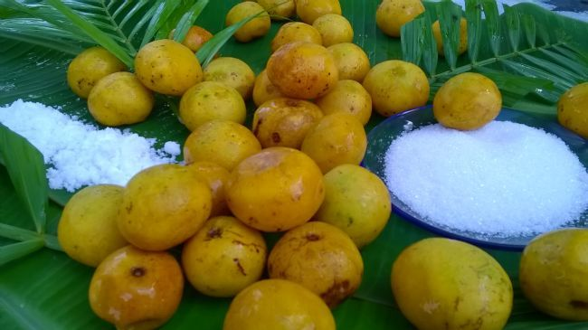 Fruta de Cedro