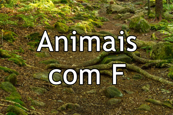 Animais com F