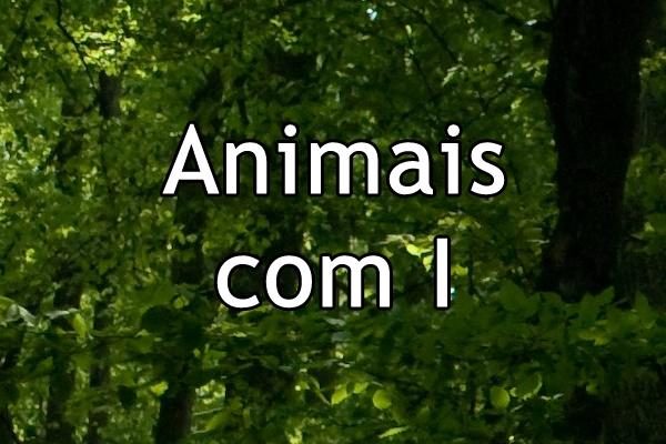 Animais com I
