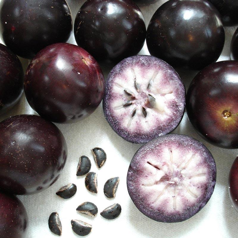 Abiu roxo Fruta
