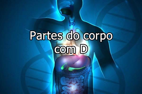 Partes do corpo com D