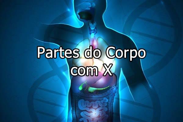 Partes do Corpo com X