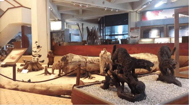 museum manggala wanabhakti