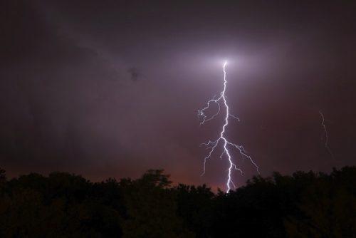 Electrical phenomena are common in nature.