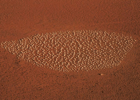 'Moon Plain' by Matej Andraz Vogrinčič