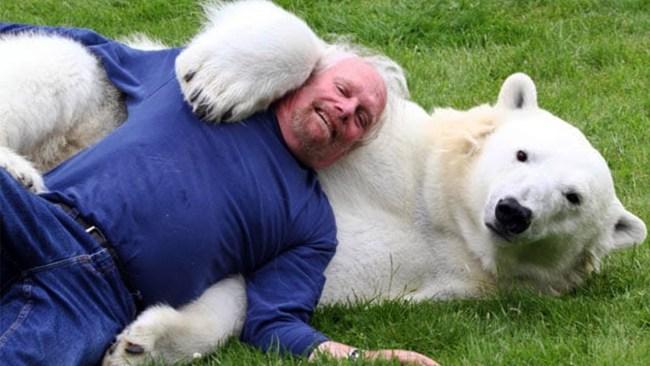Agee the Polar Bear