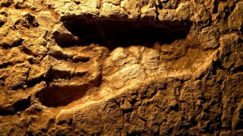 A 40 000 year old footprint, found at Lake Mungo