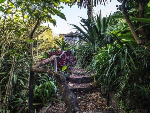 Trail inside Wendy's Secret Garden