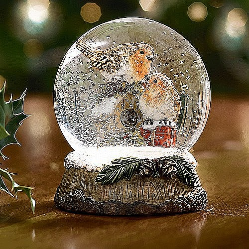 Buy Robin Snow Globe From Museum Selection