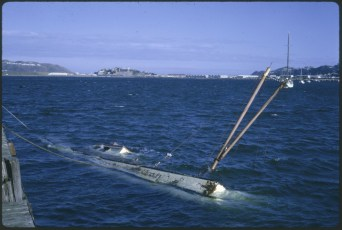 """A vessel sunk in Evans Bay after the """"Wahine"""" storm"""