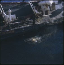 Divers gas cutting under the water line of the TEV Wahine wreck