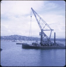 Floating crane Hikitia and Wellington Harbour pilot launch Tiakina in background