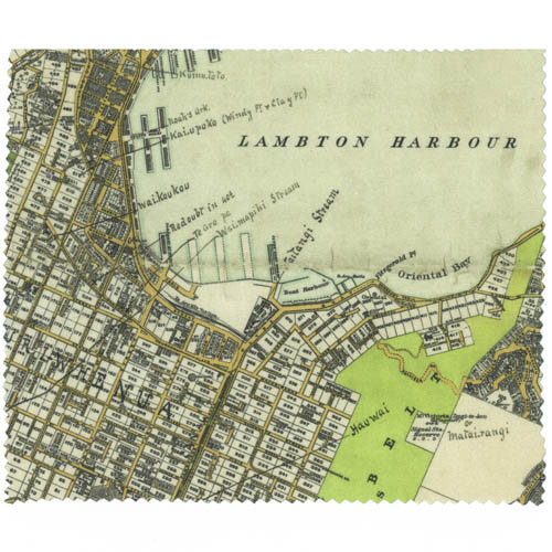 Wellington Map Lens Cloth