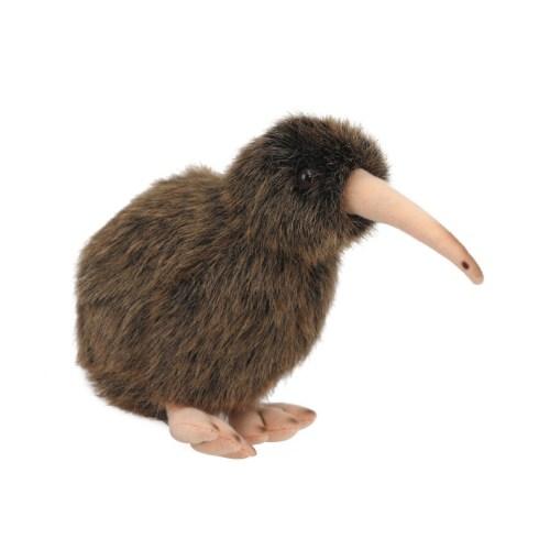 15cm Natures Kiwi