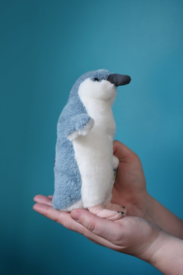 Little Blue Penguin, Soft Toy, Toy, Bird