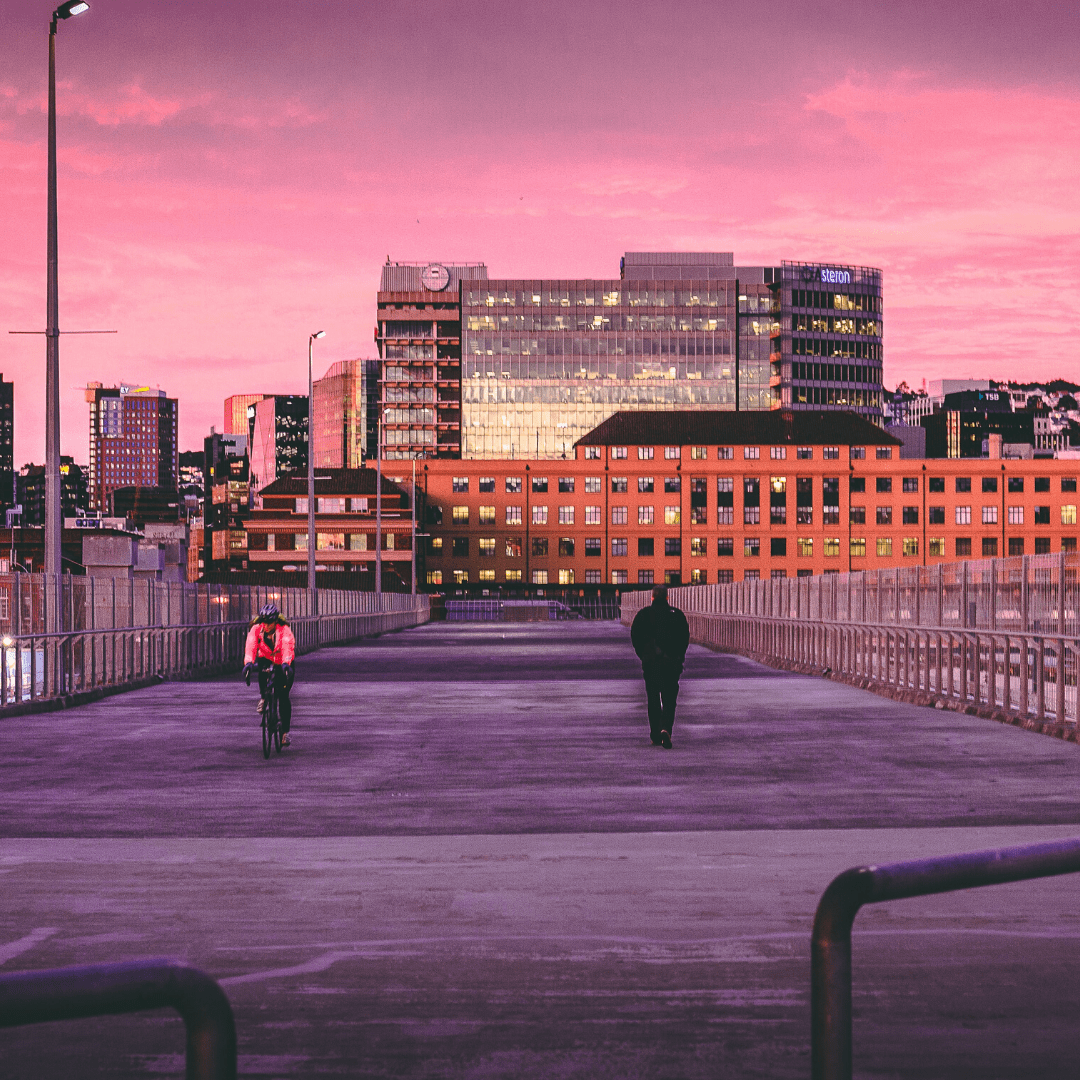Wellington at dusk with a pink sky