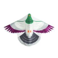 Kereru Kite by Glenn Jones