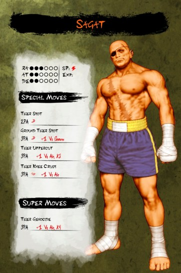 Musha_Shugyo_Street_Fighter_II_HD_Sagat