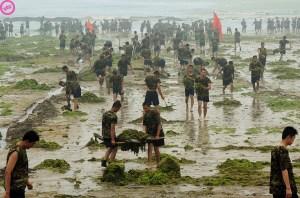 OLY-2008-CHINA-SAILING-ENVIRONMENT-POLLUTION-ALGAE