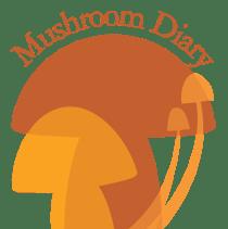 Mushroom Blog