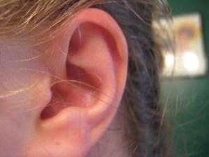 ascolto e udito