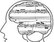 Il canto stimola l'evoluzione del cervello