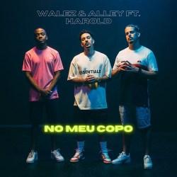 Walez & Alley – No Meu Copo (feat. Harold)