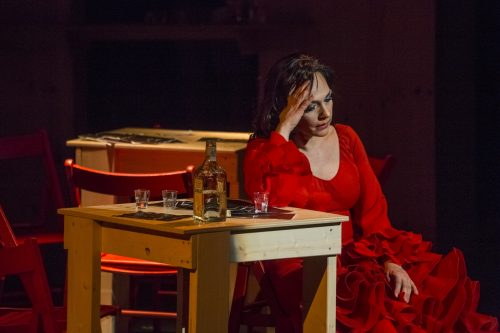 Carmen-Cristina Melis